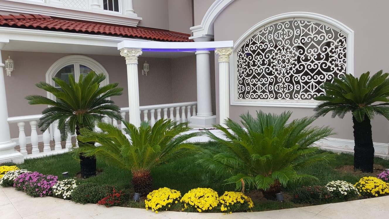 Bahçe duvar şelalesi